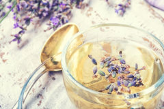 Herbal tea with lavender. Natural herbal tea with flowering lavender sprigs.Photo toned royalty free stock image