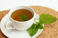 Herbal tea with lemon balm / Melissa officinalis/ Stock Photo