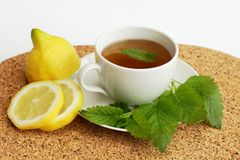 Herbal tea with lemon balm / Melissa officinalis/ Royalty Free Stock Photos