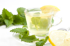 Herbal tea with lemon balm on white background Stock Photos