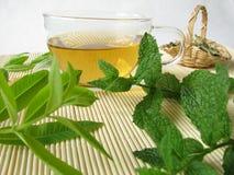 Herbal tea with lemon verbena and moroccan mint Royalty Free Stock Photo