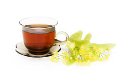Herbal tea with Linden. In glass cup over white background Stock Photography
