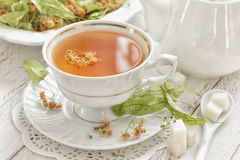 Herbal tea. With linden in a cup stock photography