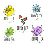 Herbal tea logo elements collection. Organic herbs and wild flowers. Hand sketched fruits and berries illustration. Flower and leaves branches. Floral vector Royalty Free Illustration