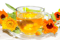 Herbal tea made from Calendula officinalus Stock Photography
