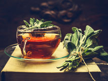 Herbal tea made from sage in glass cup standing on books, nearby lies a bundle of sage over dark wooden background Stock Image