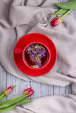 Herbal tea with mallow flowers and tulips on a gray background. Top view. Herbal tea with mallow flowers and red tulips on a gray background. Top view Royalty Free Stock Photography