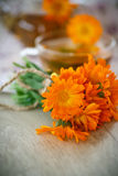 Herbal tea with marigold flowers Royalty Free Stock Photography