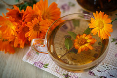 Herbal tea with marigold flowers Royalty Free Stock Photos