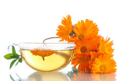 Herbal tea with marigold flowers Stock Photos