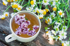 Herbal tea with marjoram Royalty Free Stock Photography