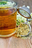 Herbal tea from meadowsweet dry in a strainer with a mug. Metal sieve with dried flowers of meadowsweet, a bouquet of fresh flowers of meadowsweet, tea in glass Royalty Free Stock Photo