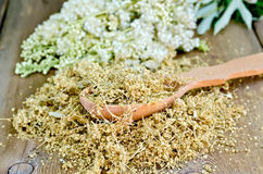 Herbal tea of meadowsweet on spoon. Wooden spoon with dried flowers of meadowsweet, a bouquet of fresh flowers of meadowsweet on a wooden board Stock Photos