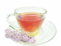 Herbal tea with medical flowers Royalty Free Stock Photo