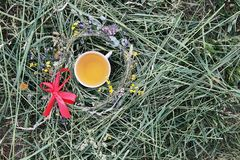 Herbal tea of medical plants in a cup outdoors on green grass. Herbal tea of medical plants in a cup outdoors on mown green grass stock image