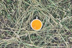 Herbal tea of medical plants in a cup outdoors. On mawn green grass stock image