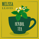 Herbal tea with Melissa leaves. The design of the label. Royalty Free Stock Image