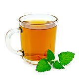 Herbal tea with melissa in a mug. Healing herbal tea in a glass mug with a sprig of melissa with a light shade on white background royalty free stock photo