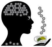 Herbal Tea for Memory Stock Photos