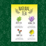 Herbal tea menu brochure. Organic herbs and wild flowers. Hand sketched fruits and berries illustration. Flower and leaves branches. Floral vector design Stock Illustration