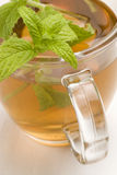 Herbal tea. Mint. Stock Images