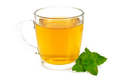 Herbal tea with mint Stock Photography