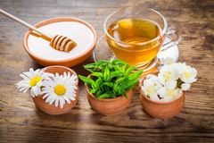 Herbal tea with mint, chamomile and jasmine flowers Stock Photo