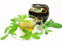 Herbal tea with mint extract Royalty Free Stock Photo