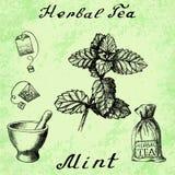 Herbal tea, mint, mortar and pestle, bag, tea bag. Stock Images