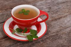 Herbal tea with mint Stock Images