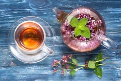 Herbal tea with mint and oregano Stock Photos