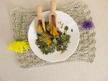 Herbal tea mix with flowers on a small plate. Herbal tea mix with flowers on a small white plate Royalty Free Stock Image