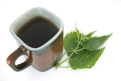 Herbal tea and  nettle. A cup of herbal tea and a nettle Royalty Free Stock Photo