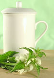 Herbal tea - nettle Royalty Free Stock Photos