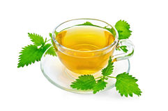 Herbal tea with nettles Stock Photo