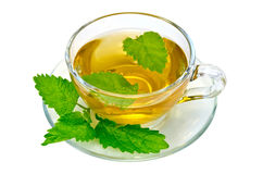 Herbal tea with nettles in a glass cup Stock Photos