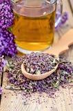 Herbal tea of oregano with a spoon in a mug Stock Photos