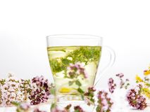 Herbal tea with origanum isolated on white background. Herbal tea in a glass cup with origanum and hypericum isolated on white background stock images