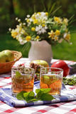 Herbal tea - outdoor dining Royalty Free Stock Photos