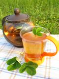 Herbal tea outdoors Stock Photo