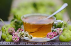 Herbal Tea with pink clover and green apples Stock Photo