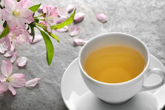 Herbal tea with plum flower Stock Photography