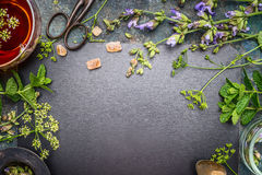 Herbal tea preparation with fresh herbs and flowers on black chalkboard background, top view. Frame royalty free stock image