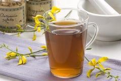 Herbal tea. Retama sphaerocarpa. Stock Photography