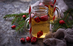 Herbal tea with rosehip. Selective focus Stock Images