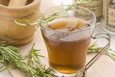 Herbal tea. Rosemary. Stock Photography