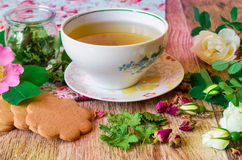 Herbal tea with roses Stock Images
