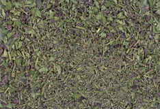 Herbal tea with sage as a background Royalty Free Stock Photos