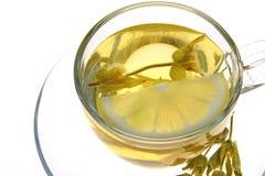 Herbal tea, sage leaves and lemon slice on white background, macro shot, Royalty Free Stock Photography