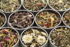 Herbal tea sampler collection Stock Photo